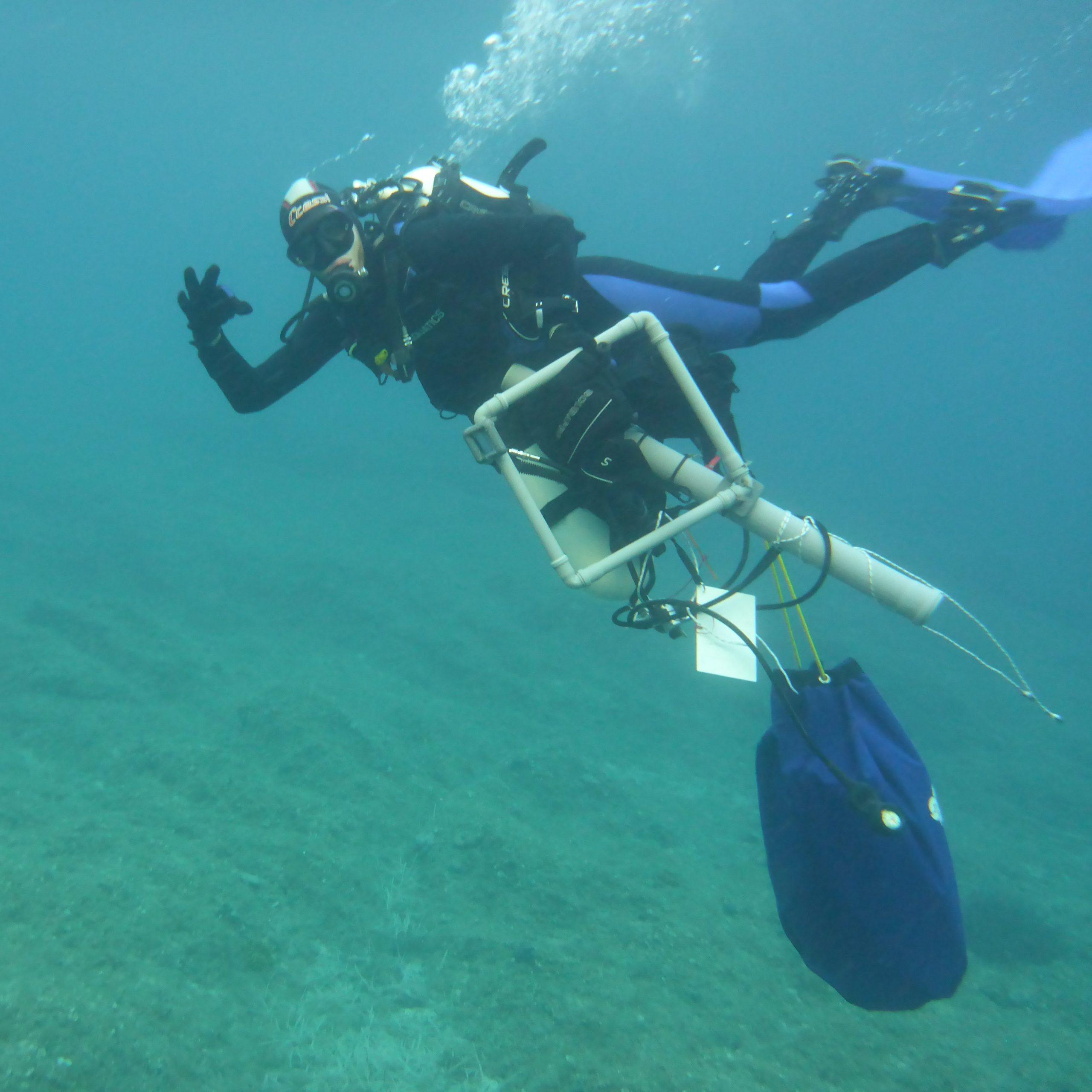 Alexander Heidenbauer, MareMundi, Meeresbiologische Seminare, Mebios-Tauchreisen